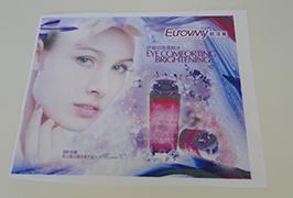 แบนเนอร์แบนเนอร์พิมพ์โดยเครื่องพิมพ์ตัวทำละลาย eco eco ขนาด 1.6 เมตร (5 ฟุต) WER-ES160 4