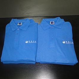 ตัวอย่างเสื้อโปโลแบบกำหนดเองโดยเครื่องพิมพ์เสื้อยืด A3 WER-E2000T